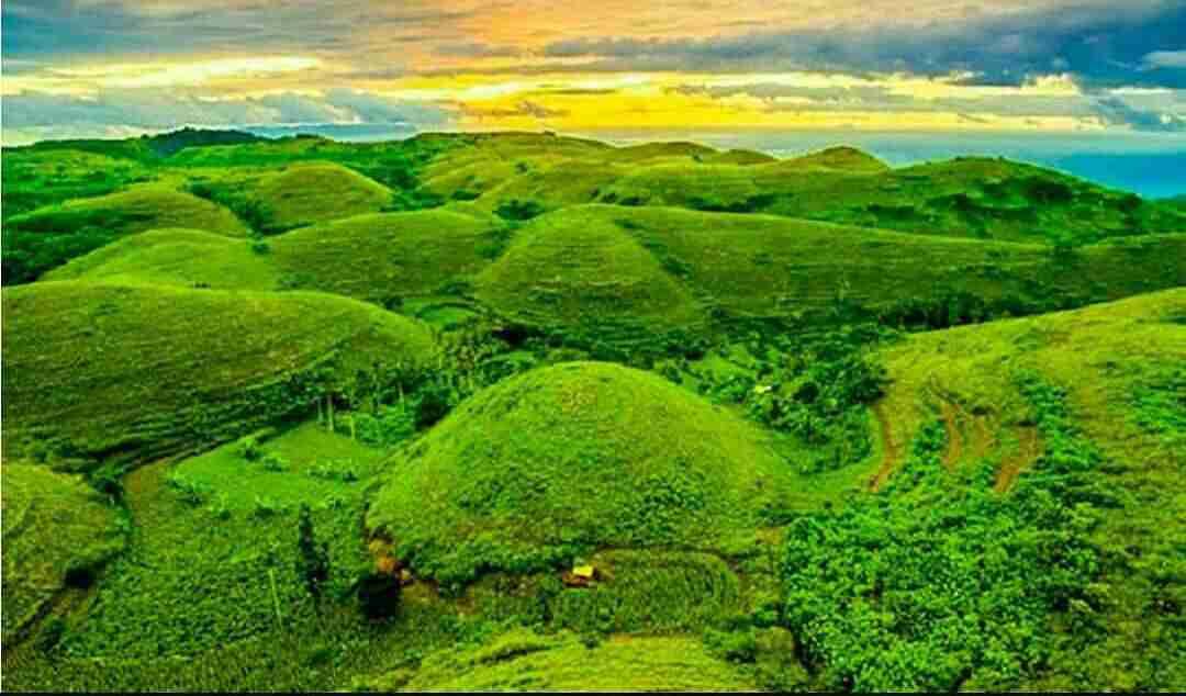 Nusa Penida Tour - telletubies hiil nusa penida tour