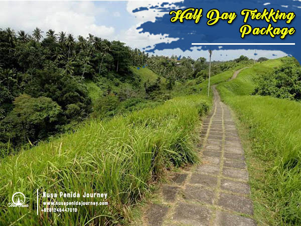 Half Day Trekking Package