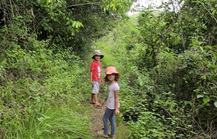 Nusa Penida Tour – Bali Tour - trekking nusa penida
