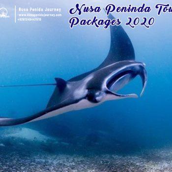 Nusa Peninda Tour Packages 2020